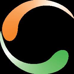 logo NVSP